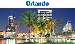Orlando, Fl - palm trees against the vibrant city background